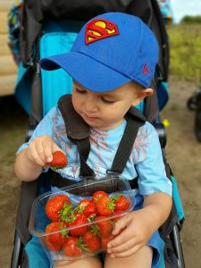 A day out on the farm eating strawberries