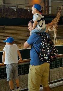 Watching the giraffes on a day out at Marwell Zoo