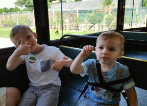 On the Land Train at Marwell Zoo