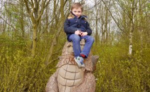 Room on the Broom dragon, Anglers Park, Wakefield