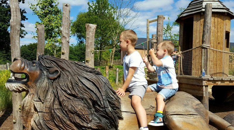 Lion around at Marwell Zoo